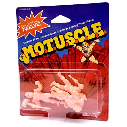 muscle_B